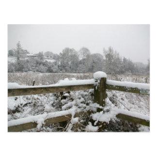 Cartão Postal Cerca da neve
