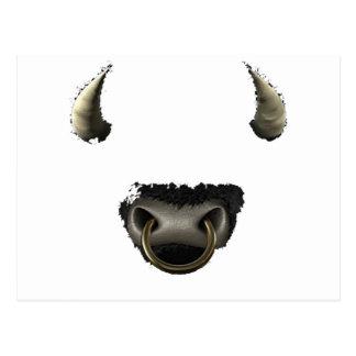 Cartão Postal cheio da cara do touro