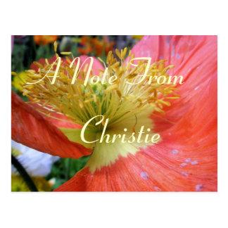 Cartão Postal Christie