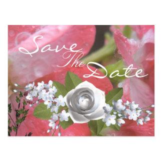 Cartão Postal Chuva cor-de-rosa
