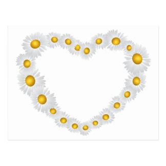Cartão Postal Coração com camomilas