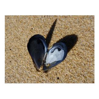 Cartão Postal coração do mexilhão