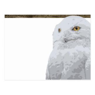 Cartão Postal Coruja nevado
