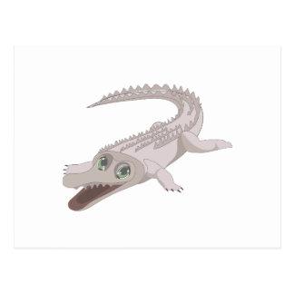 Cartão Postal Crocodilo da água salgada