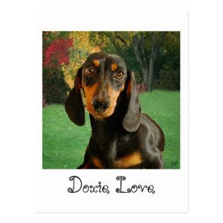 Cartão Postal Dachshund bonito (Brown diminuto de cabelos