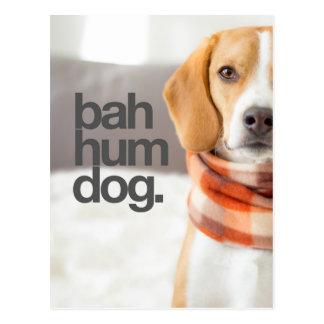 """Cartão Postal De """"lebreiro do cão do zumbido Bah"""""""