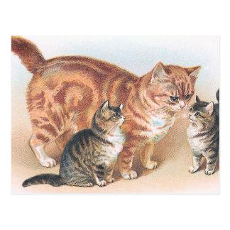 """Cartão Postal De """"vintage do gato Momma"""""""