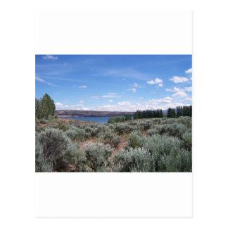 Cartão Postal Desertscape com rio