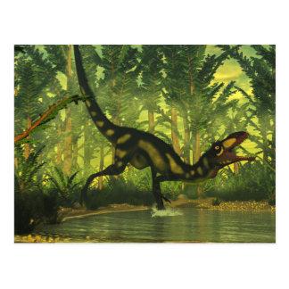 Cartão Postal Dinossauro de Dilong em uma floresta