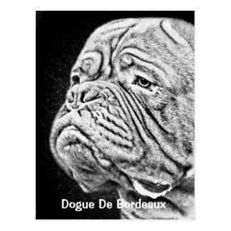 Cartão Postal Dogue De Bordéus - Mastiff francês