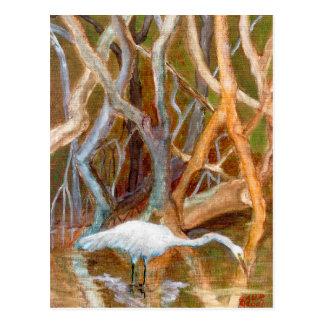 """Cartão Postal Dos """"no. 4"""" do Egret manguezais"""