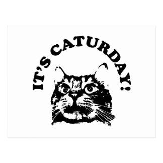 Cartão Postal É Caturday