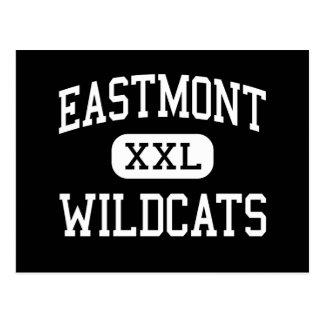 Cartão Postal Eastmont - Wildcats - alto - Wenatchee do leste