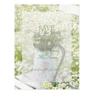 Cartão Postal ECONOMIAS da flor da camomila das margaridas de