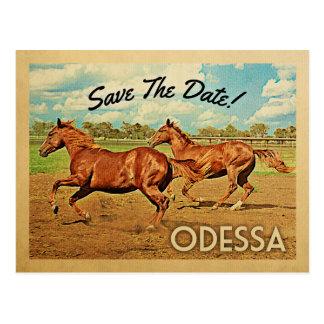 Cartão Postal Economias de Odessa Texas os cavalos da data