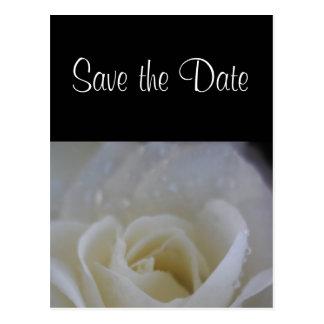 Cartão Postal Economias do rosa do anjo o anúncio do casamento