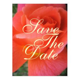 Cartão Postal Economias do rosa do verão o anúncio do casamento