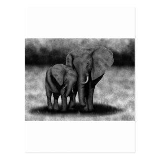 Cartão Postal Elefantes