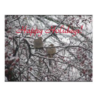 Cartão Postal Elogio nevado