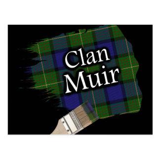 Cartão Postal Escova de pintura escocesa do Tartan de Muir do