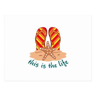 Cartão Postal Esta é vida