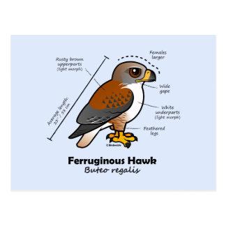 Cartão Postal Estatísticas Ferruginous do falcão