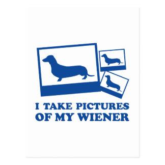 Cartão Postal Eu tomo imagens de meu Wiener