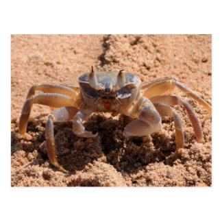 Cartão Postal Eu ver o - crab no fim da praia acima