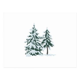 Cartão Postal Evergreens nevado