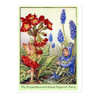 Cartão Postal Fada do jacinto do Polyanthus e de uva