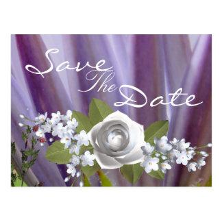 Cartão Postal Febre do Lilac