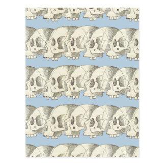 Cartão Postal Fileira dos crânios