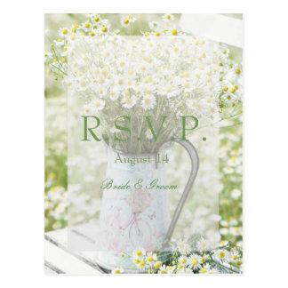 Cartão Postal Flor da camomila das margaridas de Summerfield que