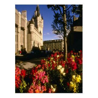 Cartão Postal Flores de Aberdeen