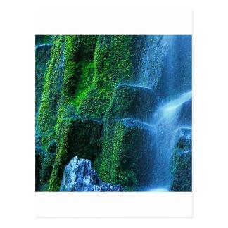 Cartão Postal Fluxo de Willamette do proxy da cachoeira