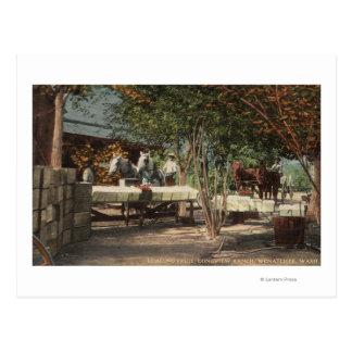 Cartão Postal Fruta de carregamento no rancho de Longview