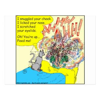 Cartão Postal Gato 443 de alerta: riscou sua pálpebra - desenhos