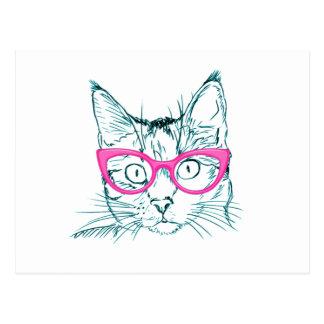 Cartão Postal Gato do hipster