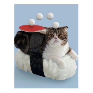 Cartão Postal Gato engraçado