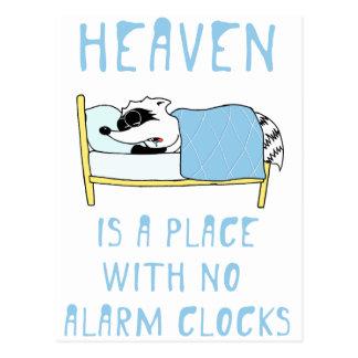 Cartão Postal Guaxinim: O céu é um lugar sem despertadores