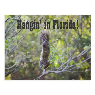 Cartão Postal Hangin em Florida