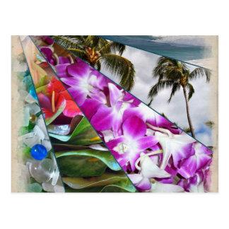 Cartão Postal Hawai'i nenhum Ka Oi