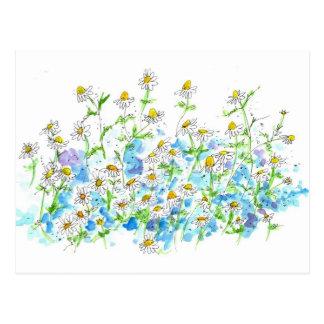 Cartão Postal Horta da margarida da camomila