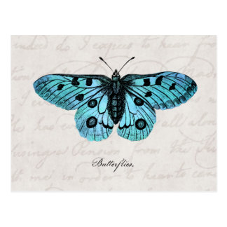 Cartão Postal Ilustração azul da borboleta da cerceta do vintage