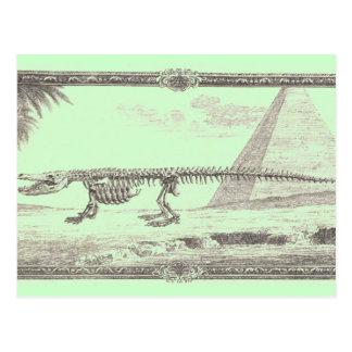 Cartão Postal Ilustração do esqueleto do crocodilo