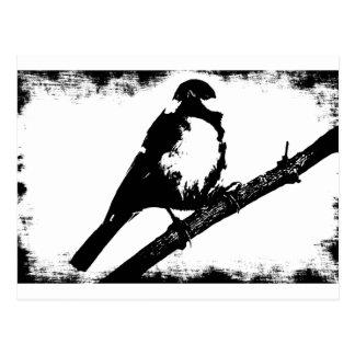 Cartão Postal Imagem preto e branco do pássaro