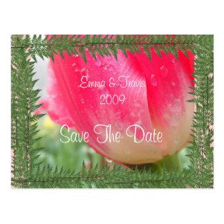 Cartão Postal Jardim dos deuses