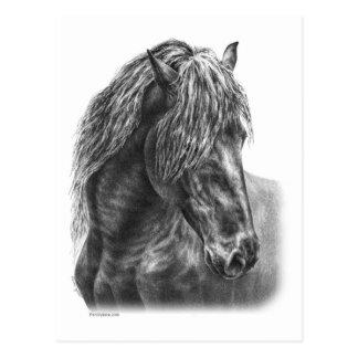 Cartão Postal Juba ondulada do retrato do cavalo do frisão