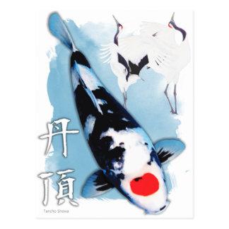 Cartão Postal Koi de Tancho