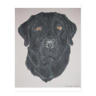 Cartão Postal Labrador preto